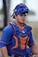 New York Mets catcher Brandon Brosher (15) during practice before a minor league spring training game against the St. Louis Cardinals on April 1, 2015 at the Roger Dean Complex in Jupiter, Florida.  (Mike Janes/Four Seam Images)