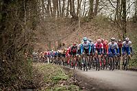 peloton coming up the Côte du Trieu<br /> <br /> 72nd Kuurne-Brussel-Kuurne 2020 (1.Pro)<br /> Kuurne to Kuurne (BEL): 201km<br /> <br /> ©kramon