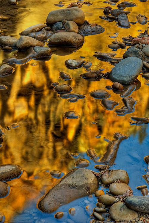 Virgin River near the Narrows in Zion National Park Utah