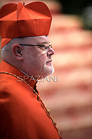 Cardinal Reinhard Marx,Pope Benedict XVI leads the Consistory where he will appoint 22 new cardinals on February 18, 2012 at St Peter's basilica at the Vatican.