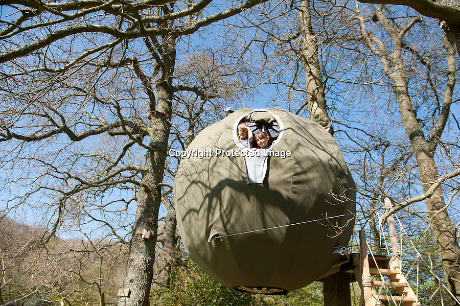 """BNPS.co.uk (01202 558833).Pic: Peter Willows/BNPS..This futuristic orb might look like a UFO as it hovers high above the ground but it is actually the country's first 'tree tent'...Suspended three metres high above the forest floor from a series of ropes attached to the woodland canopy, the state-of-the-art pod is the latest in glamping...The revolutionary design, which sleeps two adults, boasts a luxurious double bed that folds up to create a bench seat, LED lighting and even space for a woodburning stove...A wooden walkway leads campers up to the oval front door of the quirky tent, which is suspended in mid-air by eight spider-like ropes attached to surrounding trees...The frame is made from British ash wood sourced from local forests and recycled aluminium, with a cover made entirely from waterproof cotton...The three metre tree tent is the latest addition at The Secret Campsite at Town Littleworth, East Sussex...Campsite owner Tim Bullen, 45, said: """"Our campsite is all about getting closer to nature and our tree tent is great way of doing that.."""