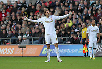 Barclays Premier League, Swansea City (White) V Norwich City (black) Liberty Stadium, Swansea, 08/12/12<br /> Pictured: Swansea's Michu can't believe it after a decision goes against Swansea<br /> Picture by: Ben Wyeth / Athena <br /> Athena Picture Agency<br /> info@athena-pictures.com