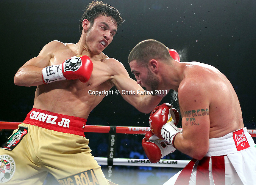 "November 19, 2011, Houston,Texas ---  November 19, 2011, Houston,Texas ---   WBC Middleweight Champion, Julio Cesar Chavez Jr.(L) stops  ""The Pride of Providence"" Peter Manfredo Jr. in the 5th round to remain undefeated, Saturday at Reliant Arena in Houston,Texas.  --- Photo Credit : Chris Farina - Top Rank  (no other credit allowed)  copyright 2011."