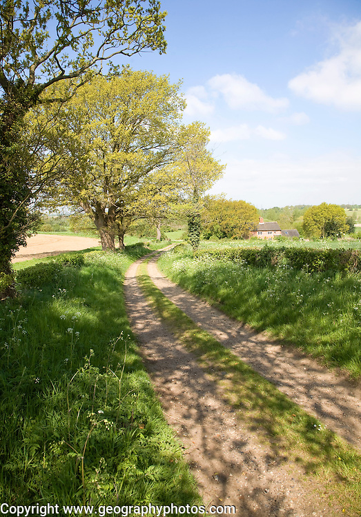 Spring seasonal landscape of quiet country lane trees and country cottage, Rendlesham, Suffolk, England