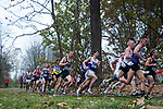 LOUISVILLE, KY - NOVEMBER 18: Runners round an early turn during the Division I Men's Cross Country Championship held at E.P. Tom Sawyer Park on November 18, 2017 in Louisville, Kentucky. (Photo by Tim Nwachukwu/NCAA Photos via Getty Images)