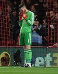 A dejected Manchester United goalkeeper David De Gea after Junior Stanislas of Bournemouth opening goal of the game<br /> - Barclays Premier League - Bournemouth vs Manchester United - Vitality Stadium - Bournemouth - England - 12th December 2015 - Pic Robin Parker/Sportimage
