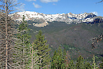 Snowy Peaks in the Rockies, Colorado, USA