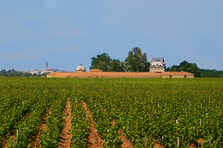 A view over the vineyard of Chateau Latour with the winery building the 'Latour Tower' on the left and the chateau on the right with the Pauillac village and church in the background, Pauillac, Medoc, Bordeaux  Gironde Aquitaine France