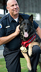 Vancouver, Canada, Aug 6th 2009. World Police and Fire Games, Police Service Dog Competition. Valor, a four-year-old German Shepherd and his handler, Ken Greenleaf, from the Redondo Beach Police Department, California, USA. Ken and Valor won first place in the Obedience, Protection, and Search portions of the competition.  They also took first place in the Overall, for a total of four gold medals.   Photo by Gus Curtis
