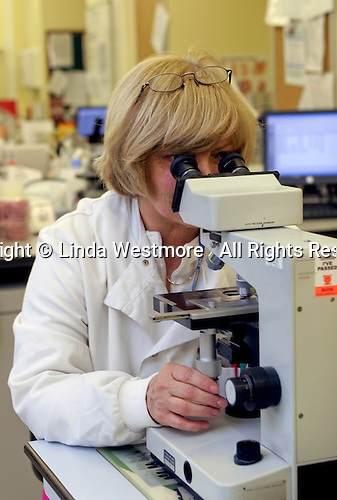 NHS hospital laboratory for analysing blood & biopsies and developing lab cultures.