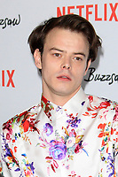 "LOS ANGELES - JAN 28:  Charlie Heaton at the ""Velvet Buzzsaw"" Los Angeles Premiere Screening at the Egyptian Theater on January 28, 2019 in Los Angeles, CA"