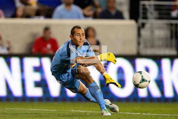 New York Red Bulls goalkeeper Luis Robles (31). The New York Red Bulls defeated Real Salt Lake 4-3 during a Major League Soccer (MLS) match at Red Bull Arena in Harrison, NJ, on July 27, 2013.