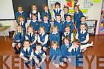 CLASS: The new pupils of Sr Joseph's junior infants class in Balloonagh NS who started school last Thursday morning were front l-r: Anna Bobiet, Caylin Murray, Yvonne Morrissey, Ava Prendergast and Kate Brophy. Second l-r: Ciara Madden, Tegan O'Sullivan, Roisin Mulrooney, Alexandra Sheridan, Laura O'Halloran and Lara Flynn. Third l-r: Alannah O'Connor, Brian McElligott, Joe Reidy, Daire Keehan, John Feely and Daragh O'Meara. Back l-r: Candice Faulkner, Kasey McCormack Timlin, Maeve Fullick Foley, Kirby Ryan, Grace O'Connor and Eimear Litchfield.   Copyright Kerry's Eye 2008