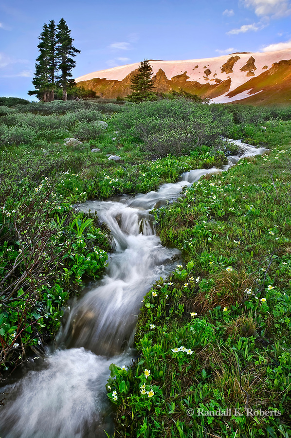 The sun rises on a ridge on Loveland Pass, Colorado as snow melt gathers into a stream running down the mountain.