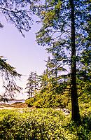 Chesterman Beach (near Wickaninnish Inn), near Tofino, Vancouver Island, British Columbia, Canada