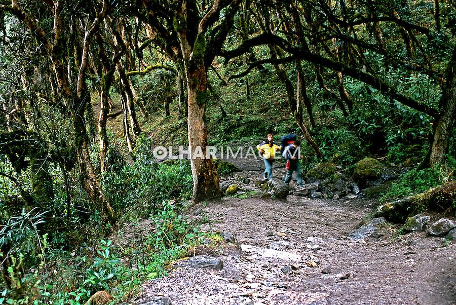 Caminho Inca, antiga peregrinação religiosa, Machu-Pichu. Perú. Foto de Renata Mello. Data: 2000