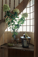 "An arrangement of ""Limelight"" hydrangeas from the garden creates a stunning focal point on the hall table"