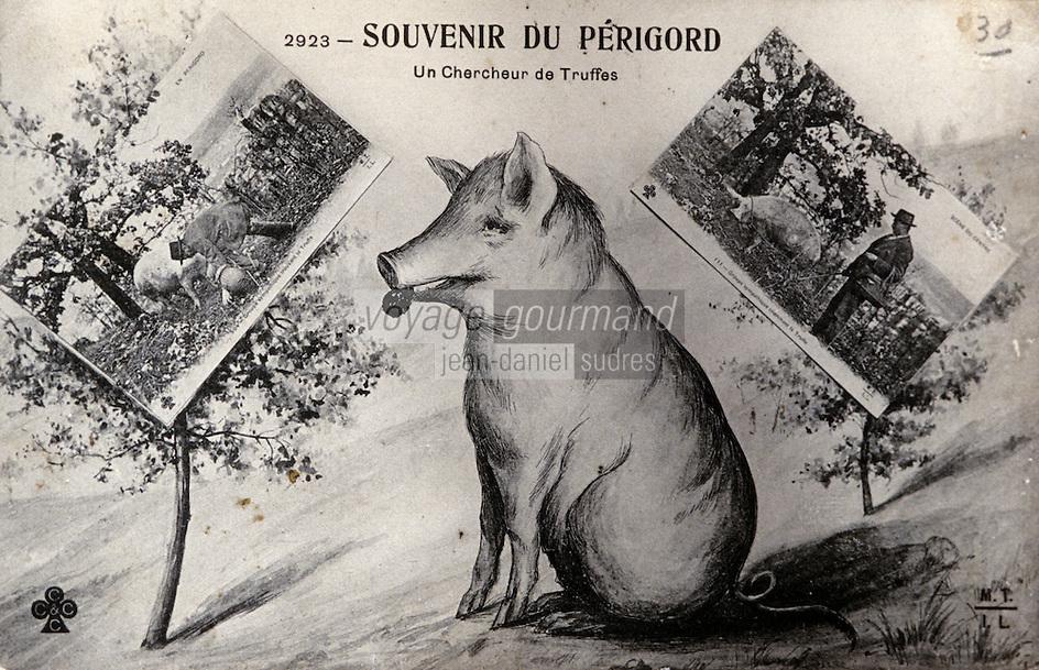 Europe/France/Midi-Pyrénées/46/Lot/Vallée du Lot/Cahors: Vieille carte postale sur le thème de la truffe - Collection Pebeyre