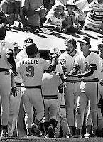 A's Joe Wallis is greeted by Wayne Gross, Rob Picciolo & others after Home Run. (1978 photo by Ron Riesterer)