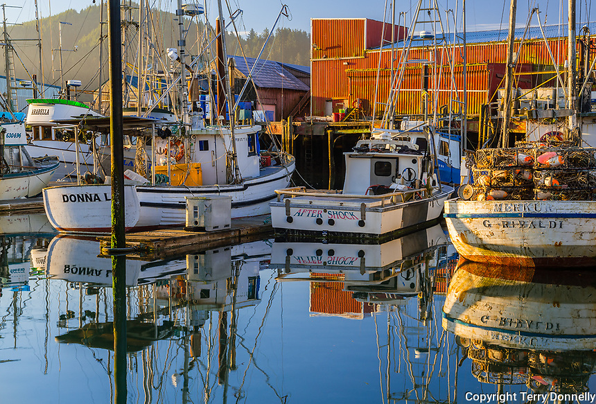 Garabaldi, Oregon:<br /> Port of Garabaldi on the Oregon coast, boats in morning sun