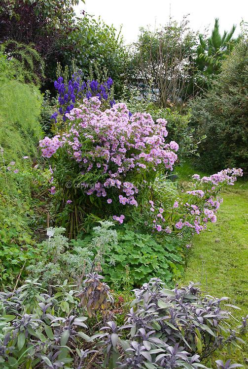 Joy Larkcom's garden, Ireland in September with vegetables, herbs, flowers
