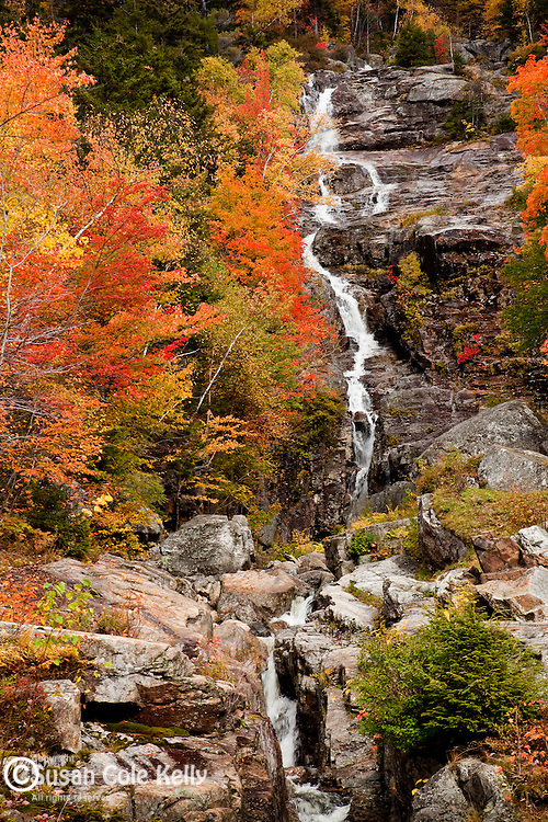 Fall foliage at Silver Cascade, Crawford Notch State Park, White Mountains, NH, USA