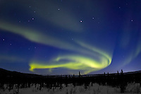Aurora borealis swirls across the sky over interior Alaska.