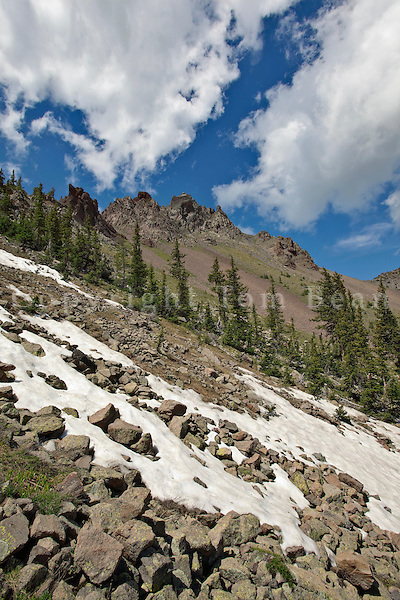 High in the Inner Basin, at 11,200 ft. elevation, tundra vegetation and lingering snowbanks, July 1, below Humphreys Peak, in San Francisco Peaks area of Coconino National Forest near Flagstaff, Arizona, AGPix_1906.