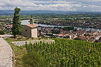 Europe/France/Rhône-Alpes/26/Drôme/Tain-L'Hermitage:  Chapelle dans le vignoble de Tain l'Hermitage AOC Hermitage et AOC Crozes-Hermitage et la vallée du Rhone