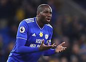 2nd February 2019, Cardiff City Stadium, Cardiff, Wales; EPL Premier League football, Cardiff City versus AFC Bournemouth; Sol Bamba of Cardiff City reacts during a stoppage in play