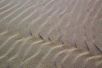 Mare. Sea....