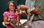 Monroe Love, 11, helps Gabe Kerschner, with Conservation Ambassadors, during a special presentation at the Boys &amp; Girls Club of Western Nevada in Carson City, Nev., on Tuesday, June 12, 2018. Love is helping to hold Noah, a Columbian boa constrictor. <br />