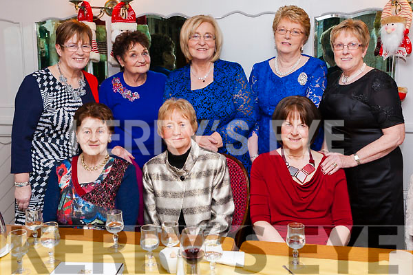 Members of Abbeyfeale Active Retirement Group enjoying Womens Christmas last Saturday night in Leen&rsquo;s Hotel.<br /> Seated: Caroline Griffin, teresa Griffin, Hannah Foley.<br /> Back: Tess Lane, mary O&rsquo; Kelly, Josephine Halpin, Helen Murphy, Ita Harnett.
