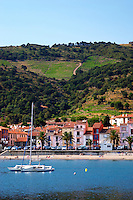 Collioure. Roussillon. The beach and the village. France. Europe. Vineyard.