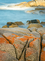 Bay of Fires is famous for its crystal-clear waters, white sandy beaches and orange lichen-covered granite boulders.
