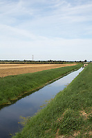 Fenland drain<br /> Picture Tim Scrivener 07850 303986<br /> &hellip;.covering agriculture in the UK&hellip;.
