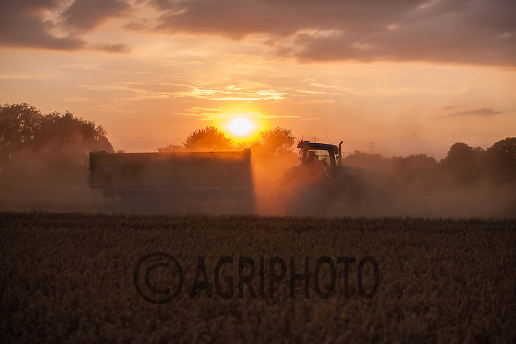 Harvesting Winter Wheat<br /> Picture Tim Scrivener 07850 303986