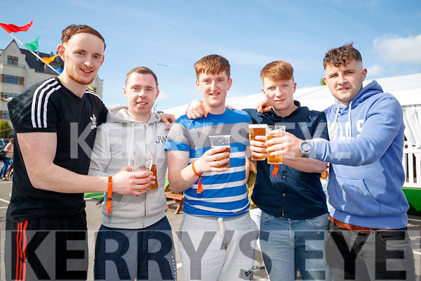 Matt Moynihan Mua, Dave Devane, Mike Hutch, David Corlett, Jack O'Connor, enjoying Killarney Beerfest at the INEC, Killarney, on Saturday last.