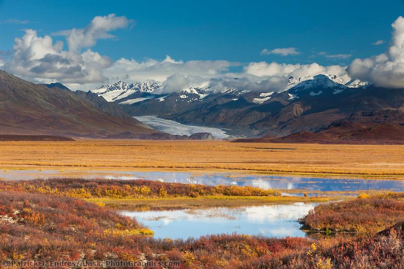 Autumn colors on the tundra wetlands,  MaClaren Glacier flows out of the Alaska range mountains, interior, Alaska.