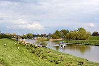 An der Pinnau in Neuendeich, Schleswig-Holstein, Deutschland