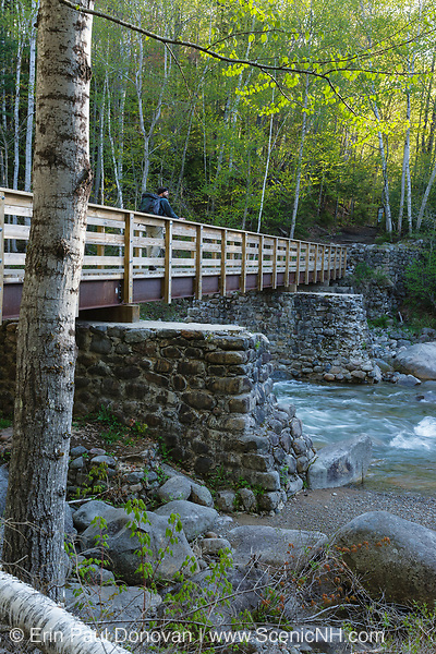 A hiker crosses over Franconia Brook in Lincoln, New Hampshire. At the end of this bridge hikers enter into the Pemigewasset Wilderness. Old abutments from Trestle 7 of the East Branch & Lincoln Logging Railroad (1893-1948) are used to support this foot bridge.