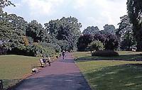 London: Regents Park--Path.  Photo '79.