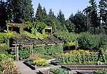 University of British Columbia botanical garden