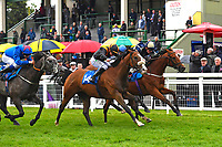 Winner of The DEOS Group Handicap Loving Your Work (14) ridden by Kieran O'Neil and trained by Ken Cunningham-Brown  during Evening Racing at Salisbury Racecourse on 11th June 2019