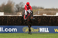 Gauvain ridden by Noel Fehily jumps the last and goes on to win the Betfred Peterborough Chase at Huntingdon Racecourse, Brampton, Cambridgeshire