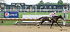 Holier than Thou winning at Delaware Park on 8/2/14