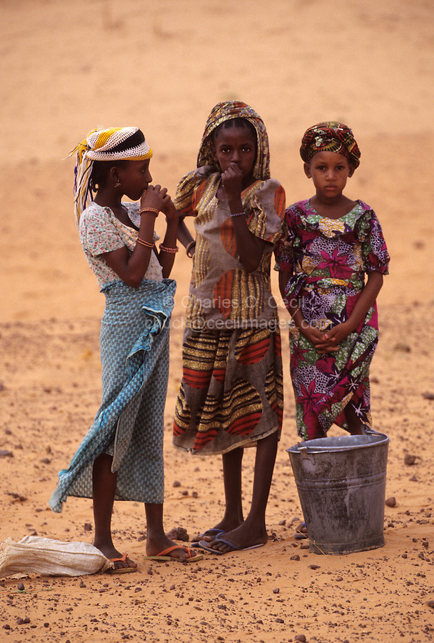 Near Niamey, Niger. Three Fulani Girls, with Water Bucket.