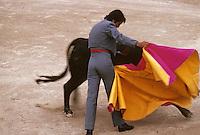 Europe/France/Provence-Alpes-Côte d'Azur/13/Bouches-du-Rhône/Camargue/Les Saintes-Maries-de-la-Mer: Corrida de toreros gitans