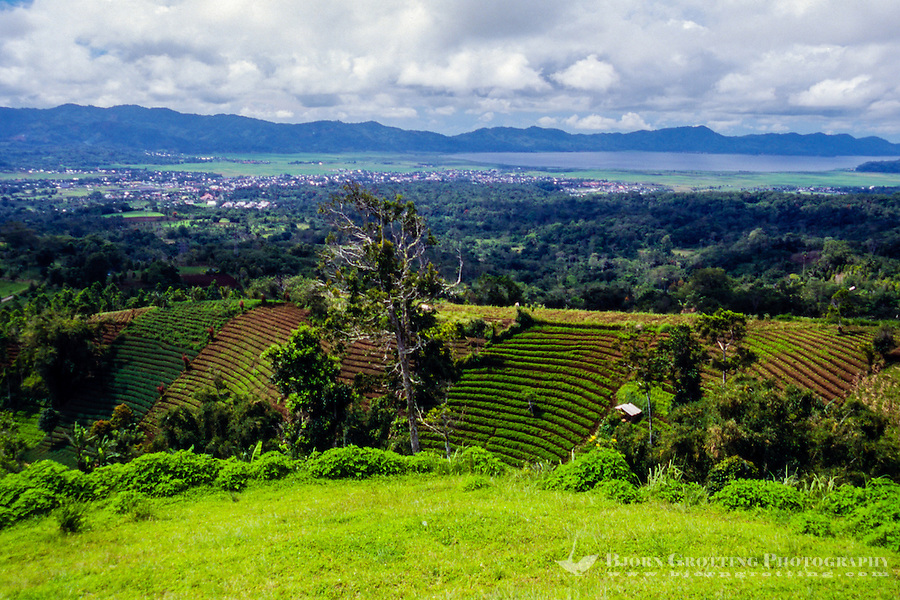 Indonesia, Sulawesi, Rurukan. Lake Tondano seen from the Rurukan area not far from Tomohon in the Minahasa highland.