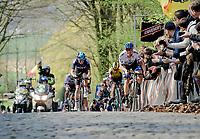 Matteo TRENTIN (ITA/Mitchelton-Scott) coming over the Kemmelberg (2nd ascent)<br /> <br /> 81st Gent-Wevelgem 'in Flanders Fields' 2019<br /> One day race (1.UWT) from Deinze to Wevelgem (BEL/251km)<br /> <br /> ©kramon